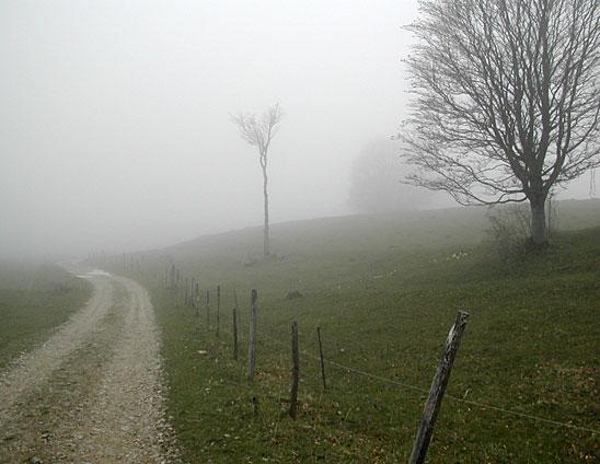 brouillard21
